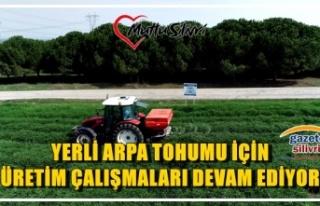 YERLİ ARPA TOHUMU İÇİN ÜRETİM ÇALIŞMALARI...